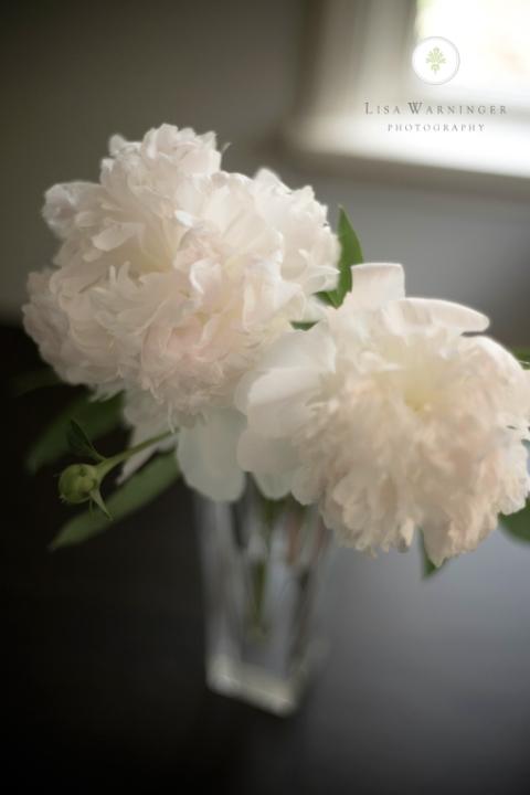 portland_florist